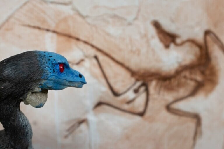 6 dinosaures d'Europe