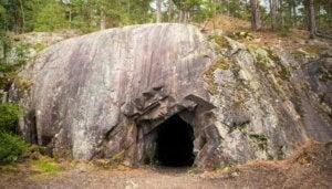 6 animaux trouvés dans la grotte de Movile