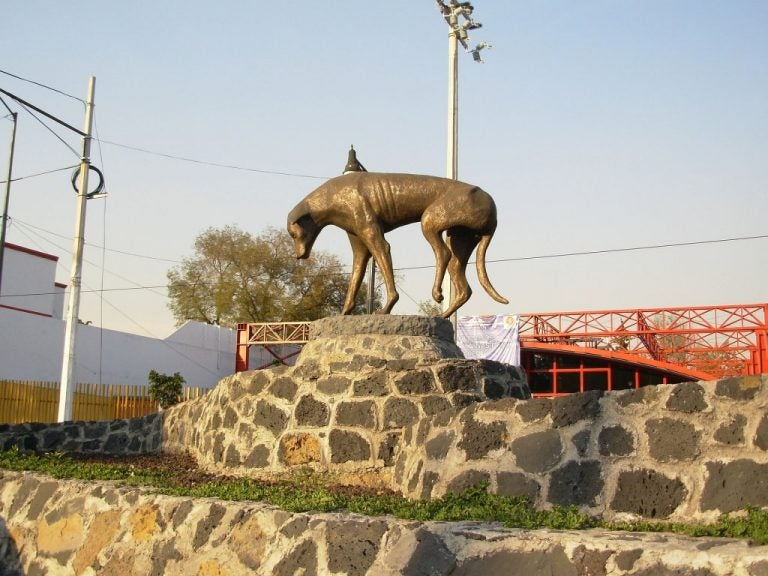 メキシコシティの野良犬の銅像