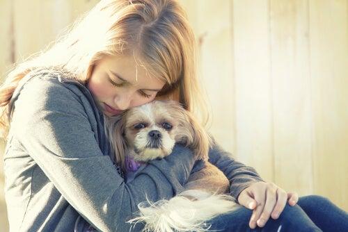 ペットはうつや悲しみを和らげてくれる