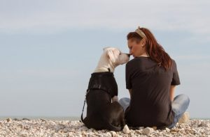 海辺で飼い主とキスする犬
