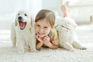 白い子犬と女の子