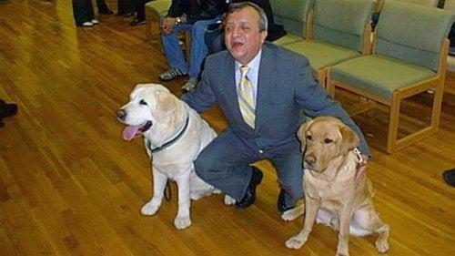 飼い主の命を守った盲導犬