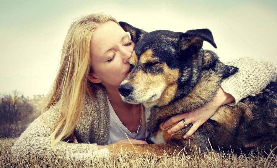 女性にキスされる犬
