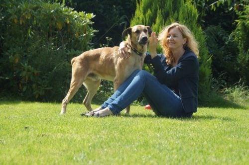 ブエノスアイレスで拾われた野良犬:オリビアとルビオ