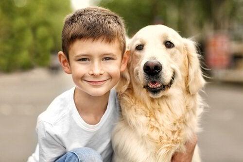 子どもがいる家庭にもピッタリな犬