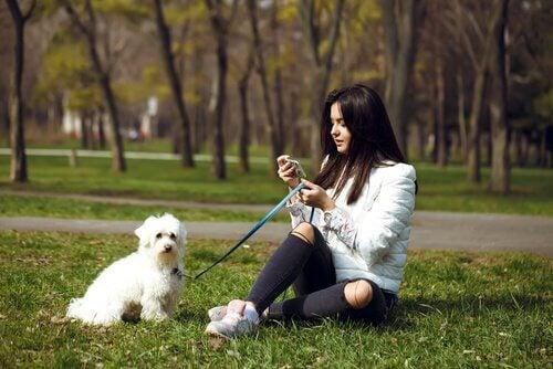 公園で座る犬と飼い主