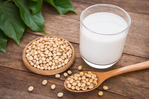 植物由来のミルクを与えてみよう:毎日の牛乳の代わりに!