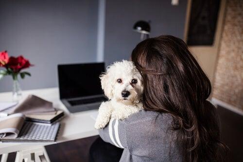 Hvordan det å eie et kjæledyr gjør deg 10 år yngre