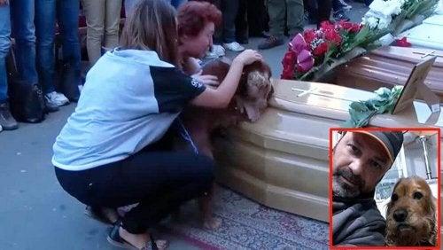 Hunden nekter å forlate kisten til sin eier, som var offer for jordskjelvet i Italia