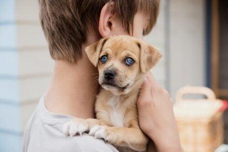 Slik kan hunder hjelpe barn med å bekjempe astma