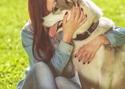 Hund og kvinne klemmer