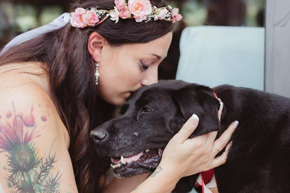 Brud kysser hund