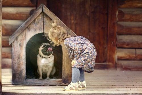 Kan man mishandle en hund ubevisst?