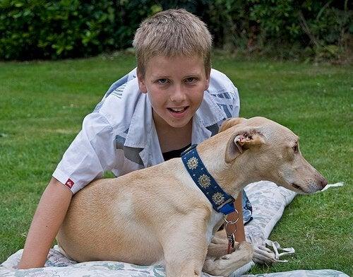 Fordeler med barn og kjæledyr som bor sammen