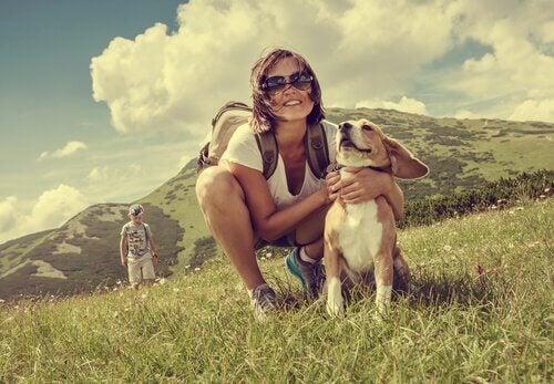 5 europeiske destinasjoner du kan reise til med hunden din