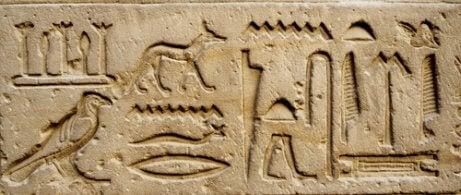 Gamle hieroglyfer av hunder