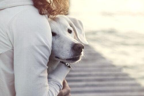 Hund og kvinne klemmer hverandre.