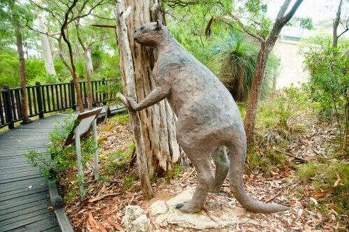 Statue av kjempekenguruen Procoptodon.