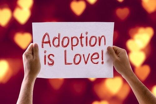 Hvor kan man adoptere en hund eller en katt?