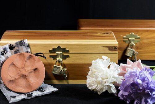 Hvilke alternativer har du når kjæledyret ditt dør?