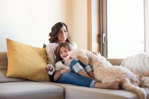 En familie som leker med sin Golden Retriever: hvordan barn skal samhandle med hunder.