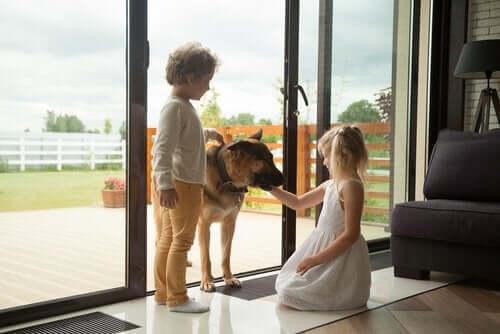 To barn og familien schäferhund