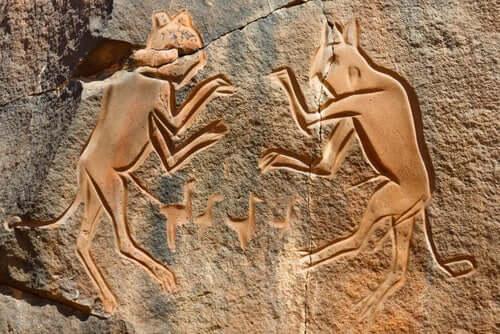 Et kort sammendrag av tamkattens historie