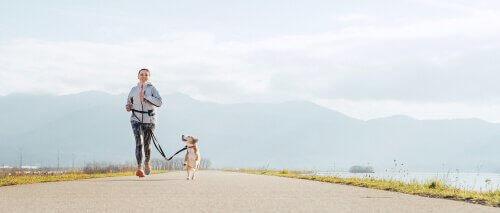 Fordeler med å løpe med hunden din