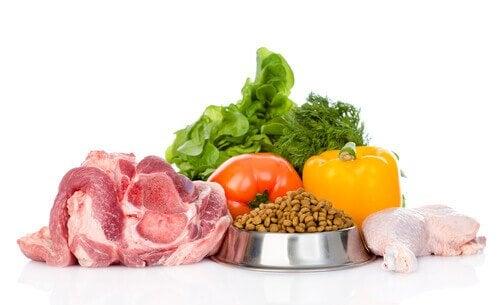 Bør du bytte til økologisk mat til kjæledyret ditt?