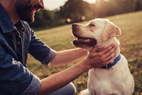 En mann og en hund som stirrer kjærlig på hverandre