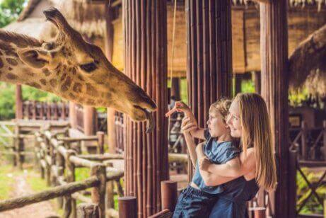 En kvinne og et barn som gir mat til en giraff