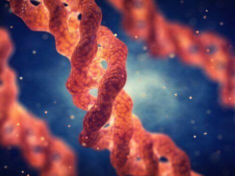 Noen DNA-tråder