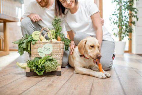 Et par og hunden deres etter å ha kjøpt grønnsaker