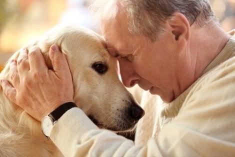 En eier og en hund som trykker pannen mot hverandre
