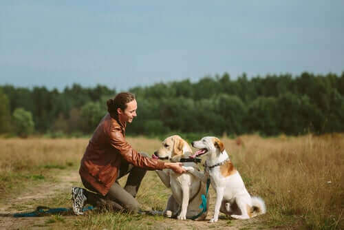 En kvinne med to hunder
