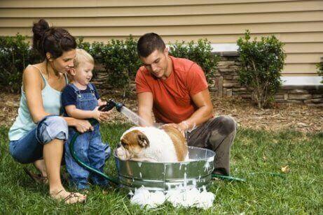 En familie som gir hunden sin et bad