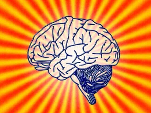 Hva handler biologisk psykologi om?