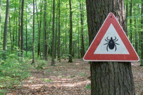 Bruk beskyttelse ute i naturen