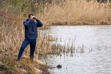 En mann som observerer dyrelivet som en del av komparativ psykologi og etologi