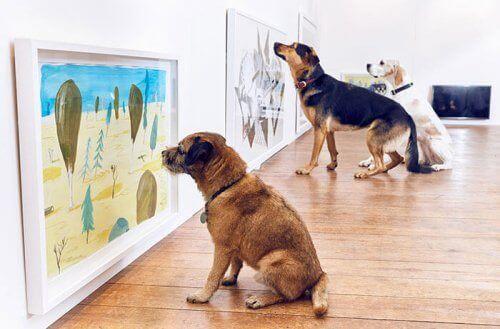 Verdens første kunstutstilling for hunder