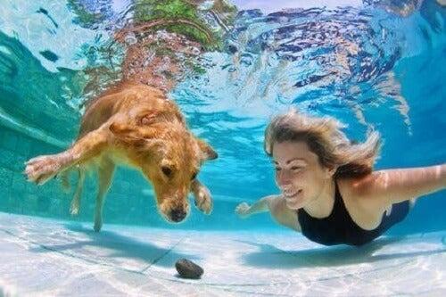 En russisk oppfinnelse vil tillate hunder å puste under vann