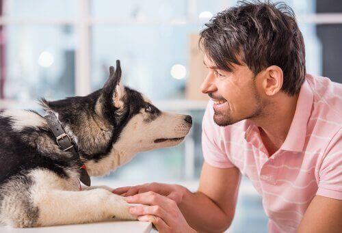En mann som snakker med hunden sin.