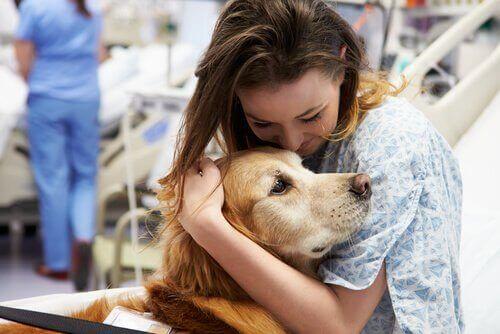 Signalhunder som har som jobb å redde liv