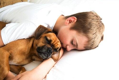 En gutt som sover med en hund i armene