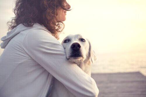 Visste du at hunder kan oppdage diabetes?