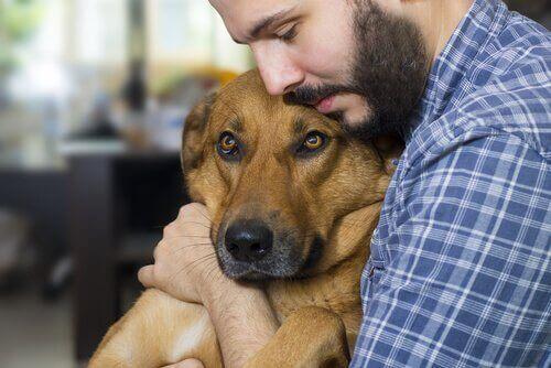 En mann som klemmer en hund.