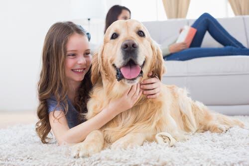En liten jente som leker med hunden sin
