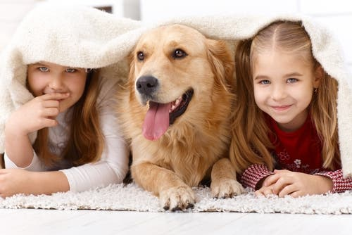 En hund og noen barn