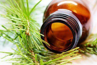 Foto som viser noen urter og en flaske, eteriske oljer kan være gifitge for kjæledyr